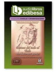 DARNOS DEL TODO AL TODO sin hacernos partes AUDIOLIBRO Santa Teresa de Jesús y la vida consagrada