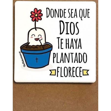 Imán de cerámica - Donde sea que Dios te haya plantado florece