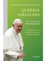 copy of Encíclica Lumen Fidei